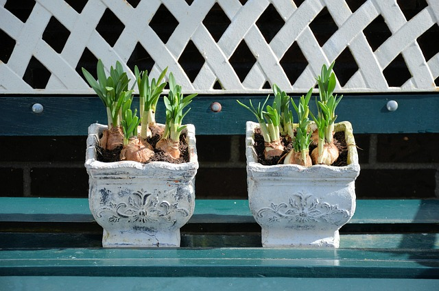 Topf für kleinere Bepflanzung
